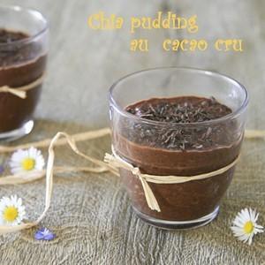 Crème de cacao crue façon chia pudding