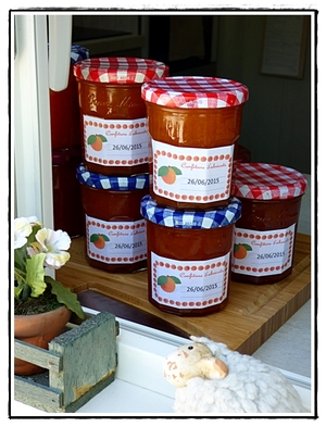 confiture d 39 abricots version avec thermomix recette iterroir. Black Bedroom Furniture Sets. Home Design Ideas