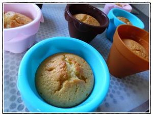 muffins au citron et au yaourt version avec thermomix recette iterroir. Black Bedroom Furniture Sets. Home Design Ideas