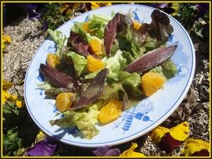 Salade de magret de canard s ch l 39 orange recette iterroir - Cuisiner un magret de canard a la poele ...